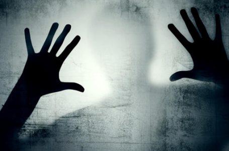 İnsanoğlunun duygusal mirası; Korku Benim Sahibim