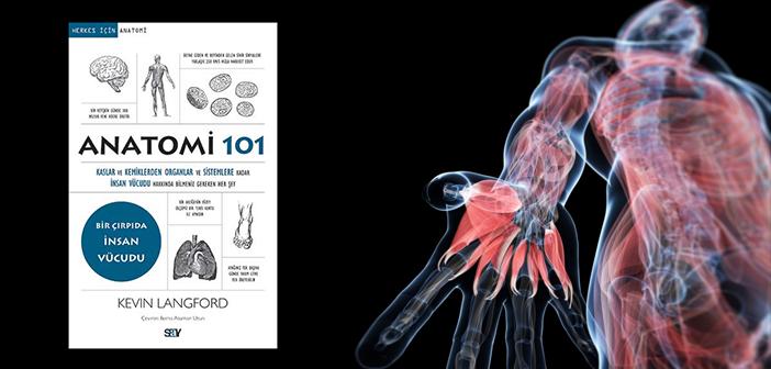 Kevin Langford Anatomi 101 RED