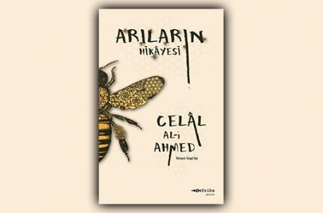 Arıların Hikayesi: Bizi Biz Yapan Emeğimiz…